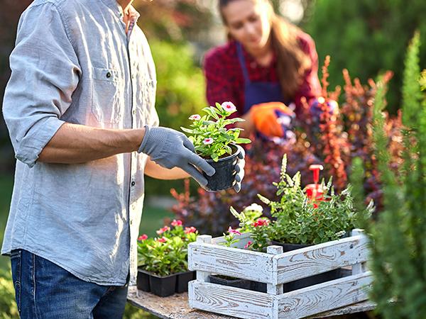 Gartenbauverein Herrsching Mitgliedschaft